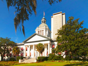 Go with a title loan company that allows you to meet with them in Tallahassee.